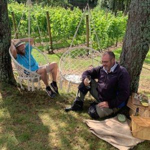 Picknick i vingården